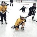 hockey's dropout rate